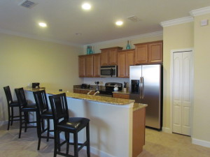 Sabal Palm Model Kitchen at Storey Lake